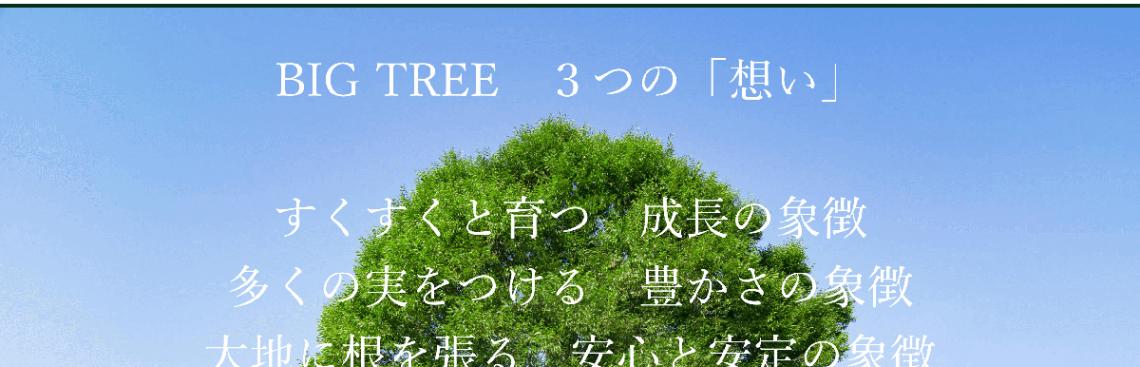株式会社BIG TREE様